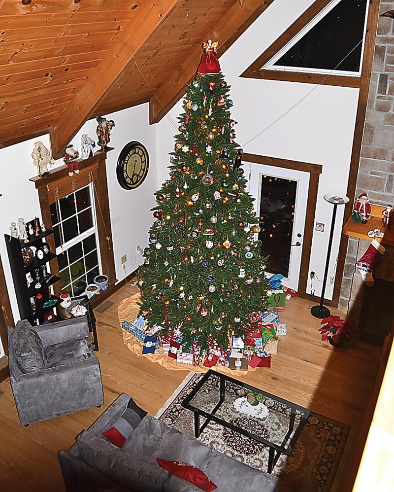 The main tree in Mali and Toney Minter's house stands 14-feet tall and fills the living room with Christmas cheer. Each ornament on the tree holds a special meaning for the couple. The tree is one of 11 the Minters decorate each year. S. Stewart photo
