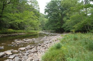 If approved by federal regulators, the 42-inch Atlantic Coast Pipeline will be built through this stretch of the West Fork of the Greenbrier River, two miles north of Durbin. Environmental experts have stated that blasting, excavation and clear-cutting will cause permanent damage to the river and surrounding ecosystem.