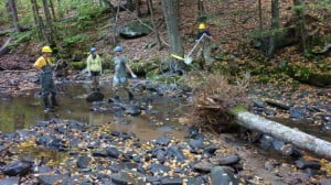 A Forest Service work crew places a tree in a stream bed last year as part of the Upper Greenbrier North Watershed/Aquatics restoration project. Trees in the stream control flow, reduce erosion, and create pools where aquatic organisms can flourish.