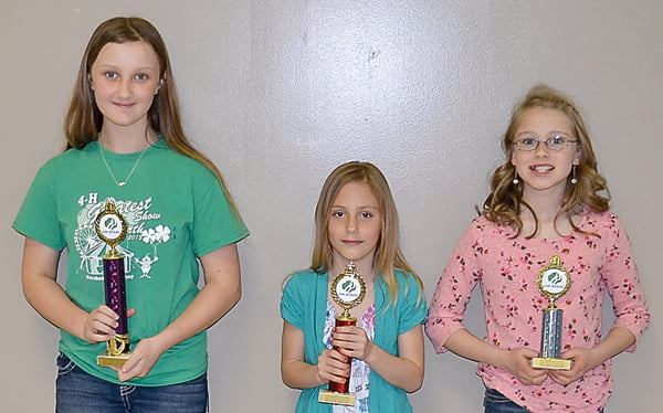 Cake division, first place, Breanna Sharp; second place, Madilyn Hicks; and third place, Makenna McKenney.