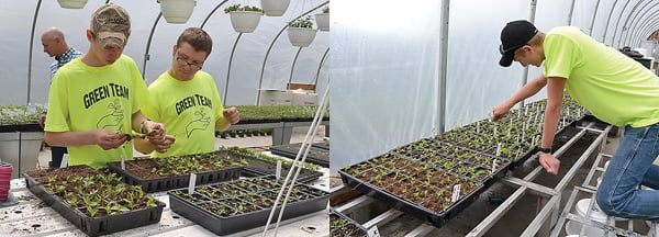 Left photo: Sophomores Michael Long, left, and Kasey Rider transplant peppers into individual trays. Right photo: Junior Kenny Queen places name markers in flats of Hungarian wax peppers. S. Stewart photos