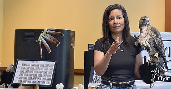 Jo Santiago, of Flying Higher, LLC, gives a presentation at  Snowshoe Mountain Resort Labor Day event Saturday. Above, she shares the story of Ty, the red tail hawk. S. Stewart photo
