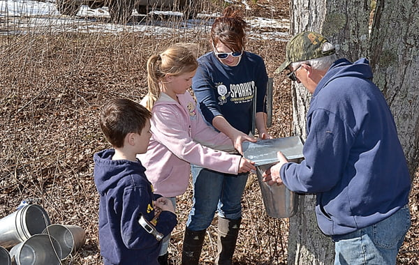 Photo by Suzanne Stewart Gathering sap at Frostmore Farm in mid-February are, from left:Noah Friel, Karis Friel, owner Rachel Taylor and John Wayne. Rachel and her husband, Adam, get a lot of help from her parents, John and Alesia Wayne, as well as neighbors, such as the Friels.